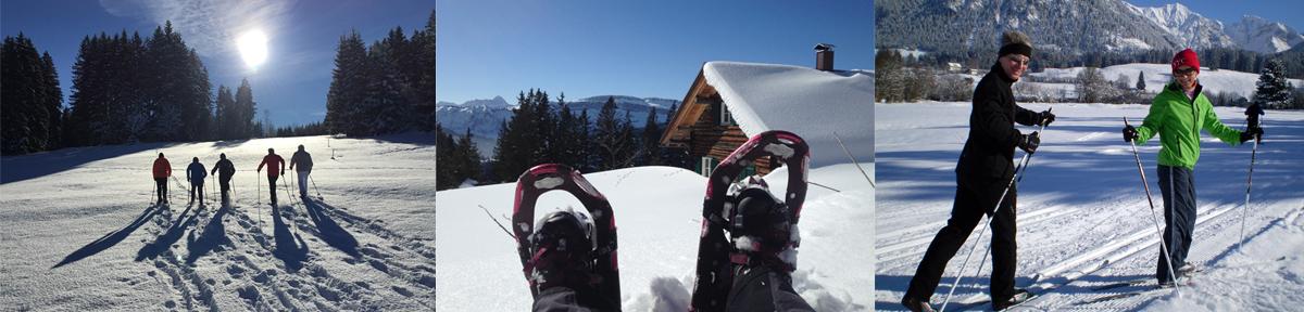 skifahren-individuell